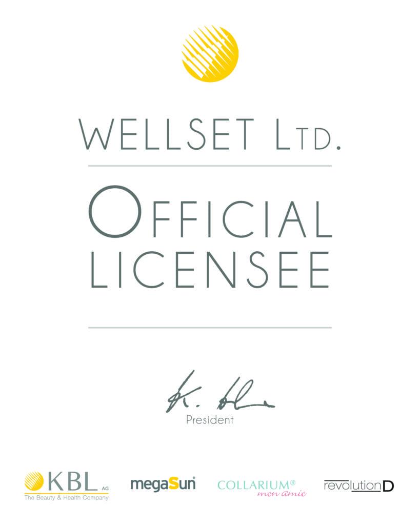 Megasun Official Partner License Solana Russia